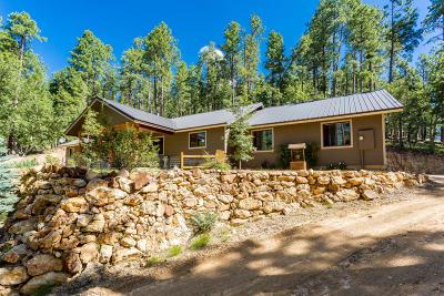 Prescott Single Family Home For Sale: 2800 E Misty Mountain Loop