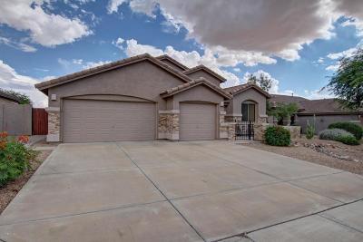 Gold Canyon Single Family Home For Sale: 6887 E Hacienda La Colorada Drive