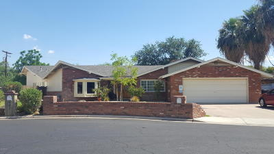 Mesa Single Family Home For Sale: 453 W Sunset Circle