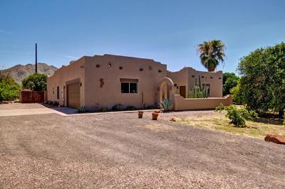 Queen Creek Single Family Home For Sale: 17429 E Starflower Court