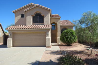 Chandler Single Family Home For Sale: 1140 W Geronimo Place