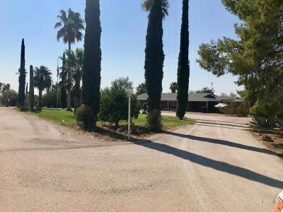 Wickenburg Single Family Home For Sale: 37505 S Camino Blanco Road