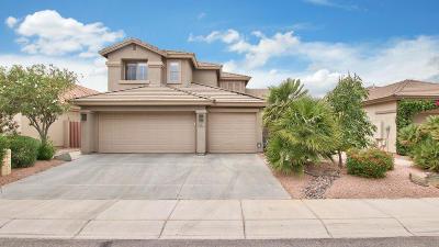 Tempe Single Family Home For Sale: 7732 S La Corta Drive