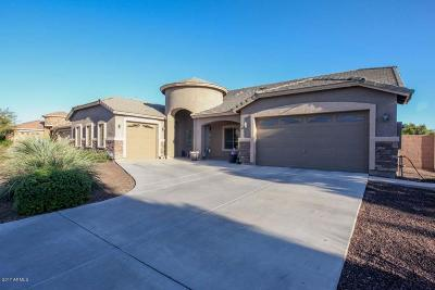 Queen Creek Single Family Home For Sale: 21925 E Rosa Road