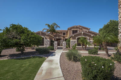 Gilbert Single Family Home For Sale: 6446 S Honor Court