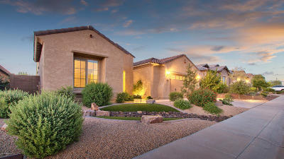 Single Family Home For Sale: 5946 E Sienna Bouquet Place