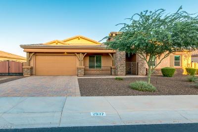 Gilbert Single Family Home For Sale: 2537 S Velvendo Drive