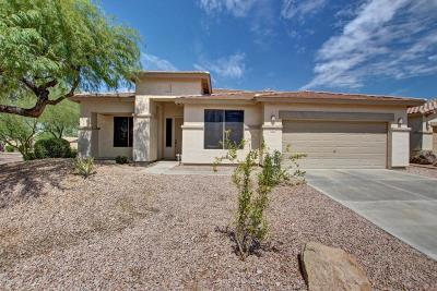 Goodyear Single Family Home For Sale: 10111 S 184th Drive