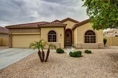 Goodyear Single Family Home For Sale: 13506 W Monte Vista Circle