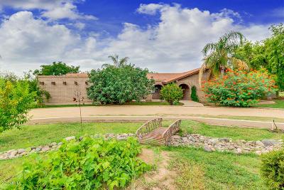 Gilbert Single Family Home For Sale: 2225 E Vaughn Avenue