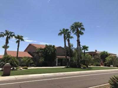 Glendale Single Family Home For Sale: 6337 W Deer Valley Road
