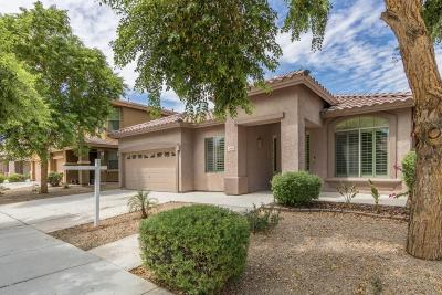 Surprise Single Family Home For Sale: 13616 W Acapulco Lane