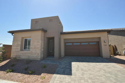 Tempe Single Family Home For Sale: 9320 S 55th Place