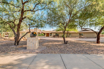 Mesa Single Family Home For Sale: 4013 E Pueblo Avenue