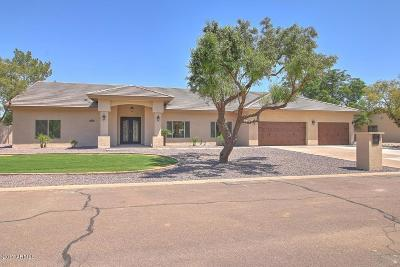 Tempe Single Family Home For Sale: 44 W Knight Lane