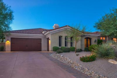 Scottsdale Single Family Home For Sale: 9536 E Sierra Pinta Drive