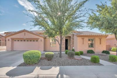 Trilogy At Power Ranch, Trilogy At Power Ranch 2, Trilogy Unit 4, Trilogy Unit 5, Trilogy Unit 6, Trilogy Unit 7 Phase B, Trilogy Unit 9 Phase B, Trilogy Unit 7 Phase A, Trilogy Unit 7, Trilogy Unit 9, Trilogy Single Family Home For Sale: 5313 S Ranger Trail