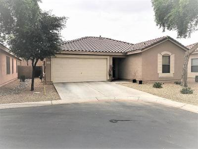 Single Family Home For Sale: 1392 S Wagon Wheel Court