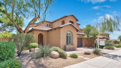 Phoenix Single Family Home For Sale: 23217 N 39th Terrace
