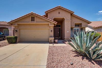 Cave Creek Single Family Home For Sale: 31014 N 44th Place