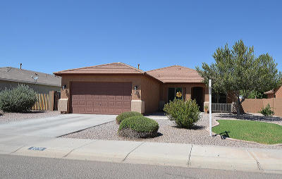 Queen Creek Single Family Home For Sale: 2278 W Angel Way