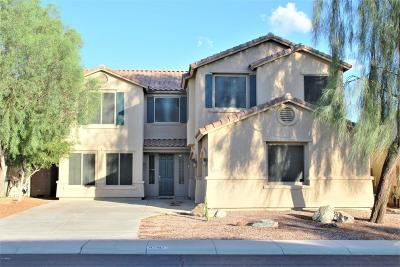 Maricopa Single Family Home For Sale: 43417 W Delia Boulevard