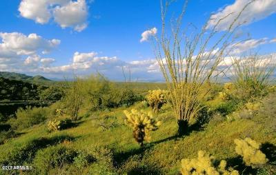 Fountain Hills Residential Lots & Land For Sale: 14121 E Paloma Court