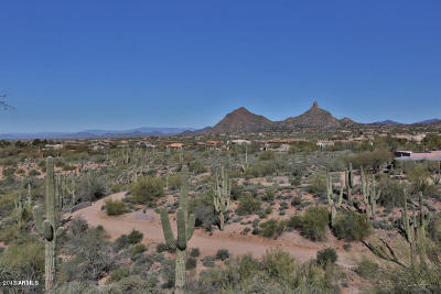 Scottsdale Residential Lots & Land For Sale: 10555 E Pinnacle Peak Road