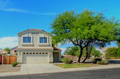 Surprise Single Family Home For Sale: 11418 W Austin Thomas Drive