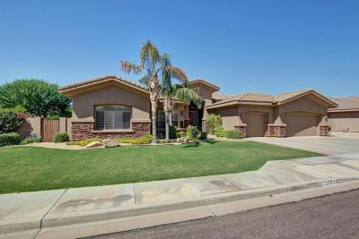 Phoenix Single Family Home For Sale: 25628 N Lawler Loop