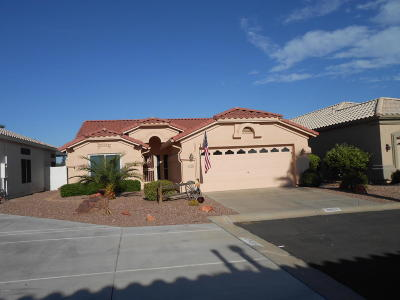 Surprise Single Family Home For Sale: 11553 W Coyote Court