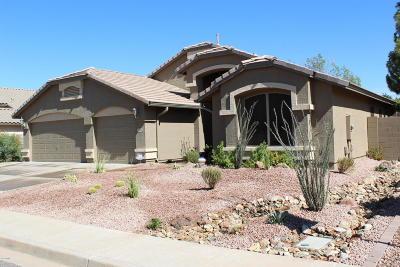Chandler Single Family Home For Sale: 2270 E Whitten Street