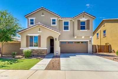 Queen Creek Single Family Home For Sale: 20959 E Creekside Drive