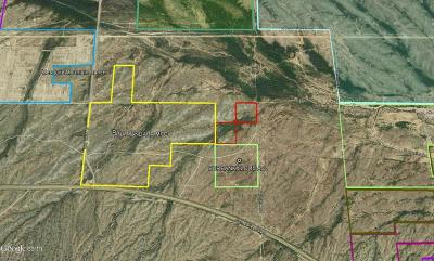 Surprise Residential Lots & Land For Sale: 219000 W Sun Valley Parkway