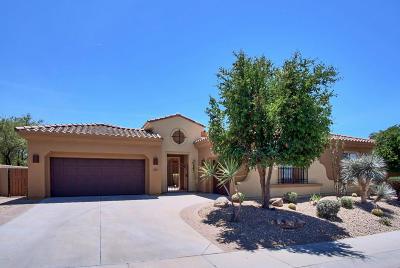 Phoenix Single Family Home For Sale: 3963 E Nocona Lane