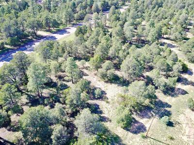 Overgaard Residential Lots & Land For Sale: 2204 Four Point Circle