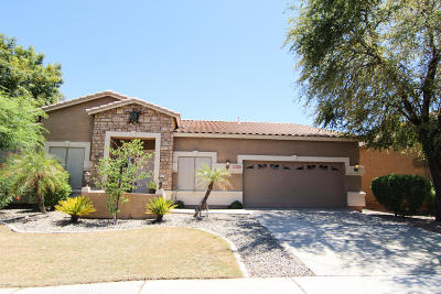 Gilbert Single Family Home For Sale: 1335 S Sandstone Street