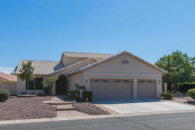 Sun Lakes Single Family Home For Sale: 24123 S Cactus Flower Drive