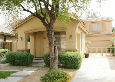 Chandler Single Family Home For Sale: 1161 N Cholla Street