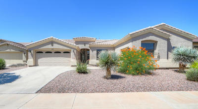 Maricopa Single Family Home For Sale: 41962 W Centennial Road