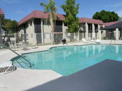 Tempe  Apartment For Sale: 700 W University Drive #246