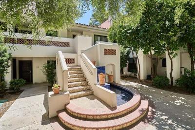Tempe Condo/Townhouse For Sale: 5200 S Lakeshore Drive #233
