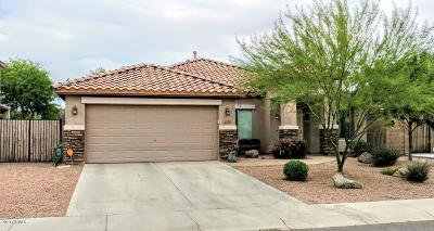 San Tan Valley Single Family Home For Sale: 35069 N Gurnsey Trail