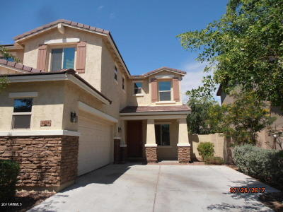 Gilbert Single Family Home For Sale: 4236 S Red Rock Street