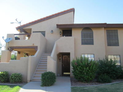 Chandler, Gilbert, Mesa Condo/Townhouse For Sale: 1351 N Pleasant Drive #1008