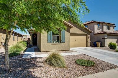 Queen Creek Single Family Home For Sale: 3994 W Kirkland Avenue