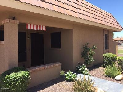 Phoenix Condo/Townhouse For Sale: 420 W Blackhawk Drive #4