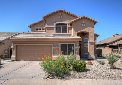 Scottsdale Single Family Home For Sale: 10531 E Salt Bush Drive