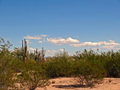 Queen Creek AZ Residential Lots & Land For Sale: $129,000