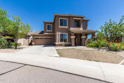 Single Family Home For Sale: 16205 N 180th Drive